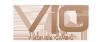 Logo Visionary iGaming