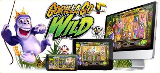 go wild casino francais